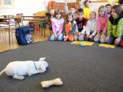 Malá Thaya si hraje ve třídě